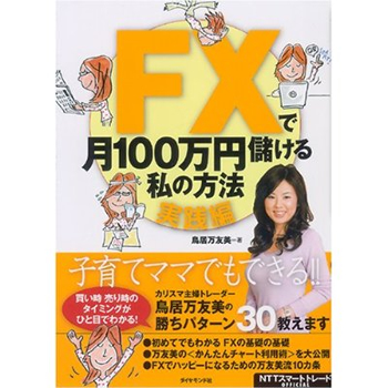 FXで月100万円儲ける私の方法 【実践編】