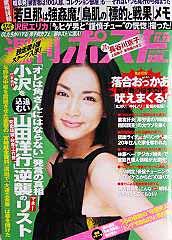 週刊ポスト 11月23日号